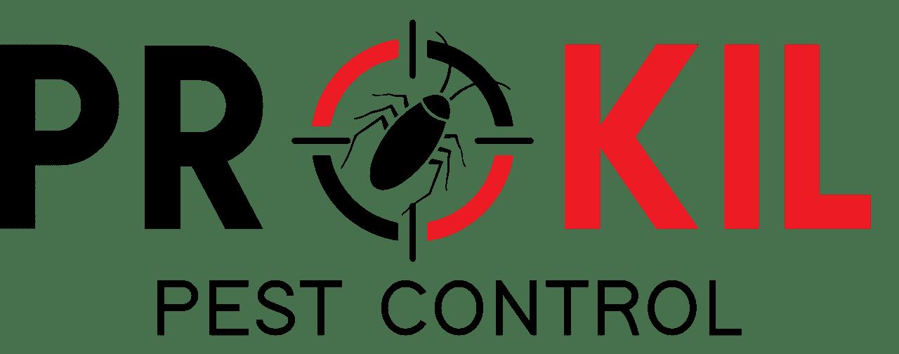Pest Control Services | Termite Inspection & Treatment